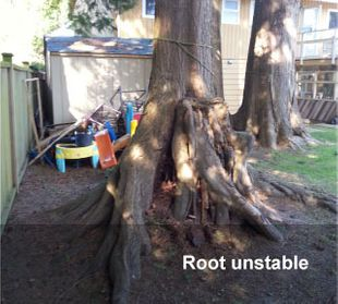 root unstable